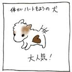 Inu01_2